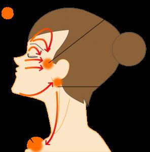 BNLS(脂肪溶解注射)後の顔マッサージ