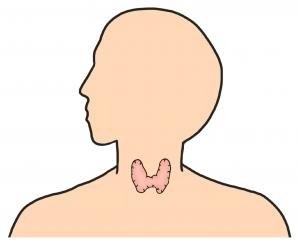 BNLSは甲状腺に注射できる?